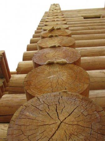Строительство дома из лиственницы — плюсы и минусы