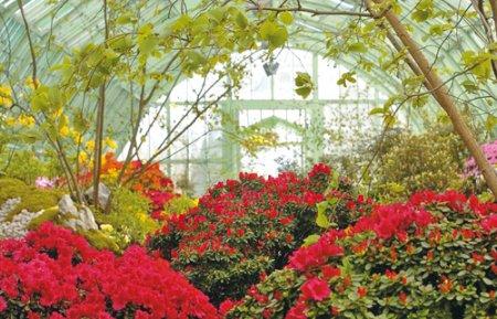 Светопрозрачные конструкции для вашего сада